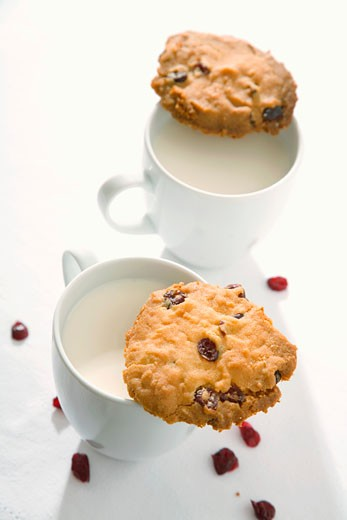 Stock Photo: 1532R-37833 Two cranberry cookies and two cups of milk