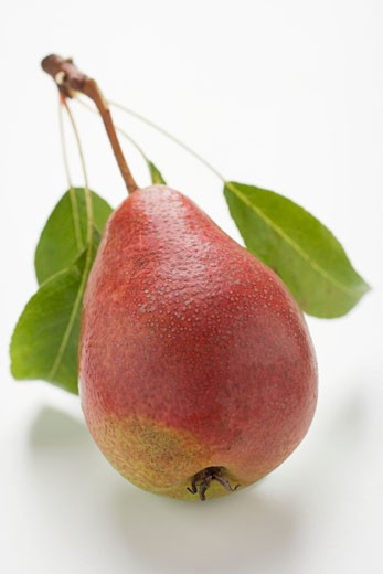 Red pear with stalk and leaves : Stock Photo