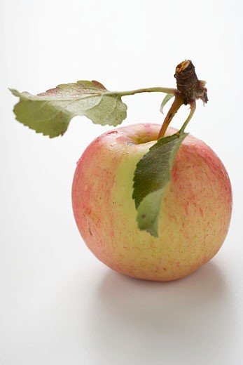 Stock Photo: 1532R-38697 Red apple with stalk and leaves