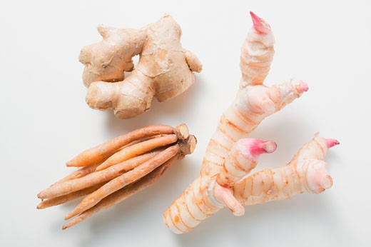 Ginger, galangal and fingerroot : Stock Photo