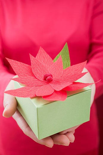 Woman holding Christmas parcel with poinsettia : Stock Photo