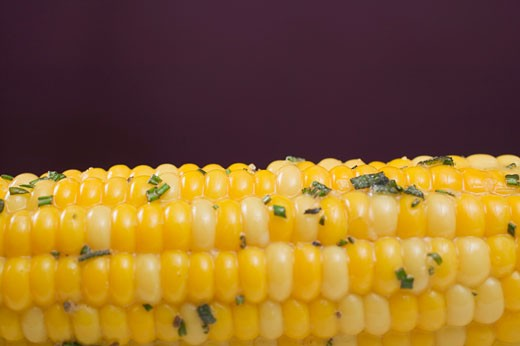 Stock Photo: 1532R-41156 Corn on the cob with herb butter