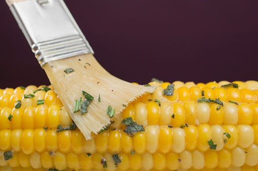 Brushing corn on the cob with herb butter : Stock Photo