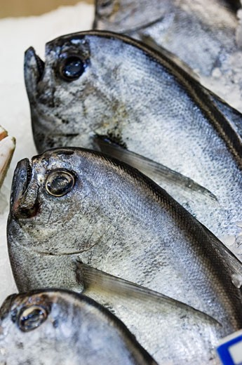 Long-finned bream on a market stall : Stock Photo