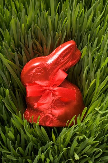 Stock Photo: 1532R-46383 Red chocolate Easter Bunny in grass