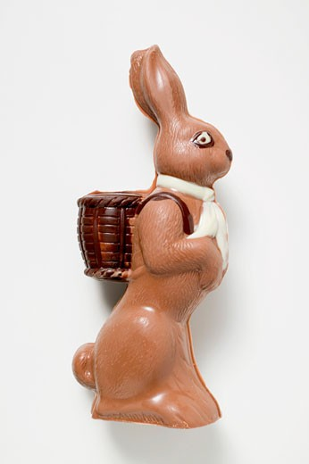 Chocolate Easter Bunny : Stock Photo