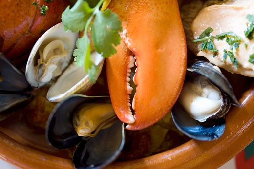 Stock Photo: 1532R-50465 Bouillabaisse