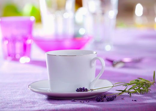 White cup and saucer with silver rim, lavender : Stock Photo