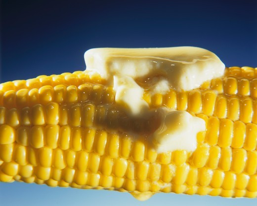 Cooked corn on the cob with melting butter : Stock Photo