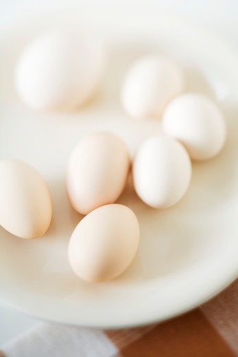 Various kinds of eggs on plate : Stock Photo
