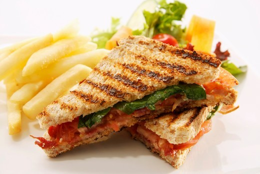 Stock Photo: 1532R-56965 Toasted cheese and tomato sandwich with chips and a salad