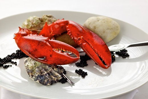 Stock Photo: 1532R-58195 Lobster, oysters and caviar on plate