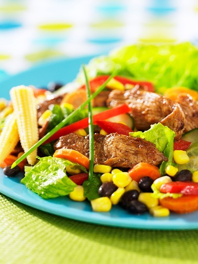 Stock Photo: 1532R-58446 Vegetable salad with spicy chicken