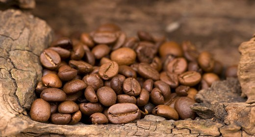 Stock Photo: 1532R-58569 Coffee beans on a wooden surface