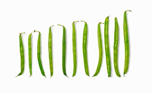 Stock Photo: 1532R-59418 Green beans (diagram)