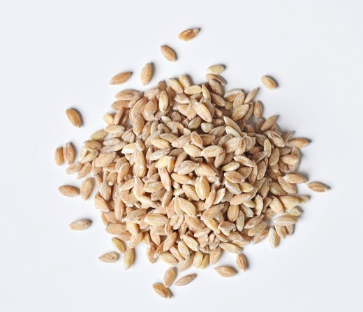 Stock Photo: 1532R-61056 A pile of wholegrain