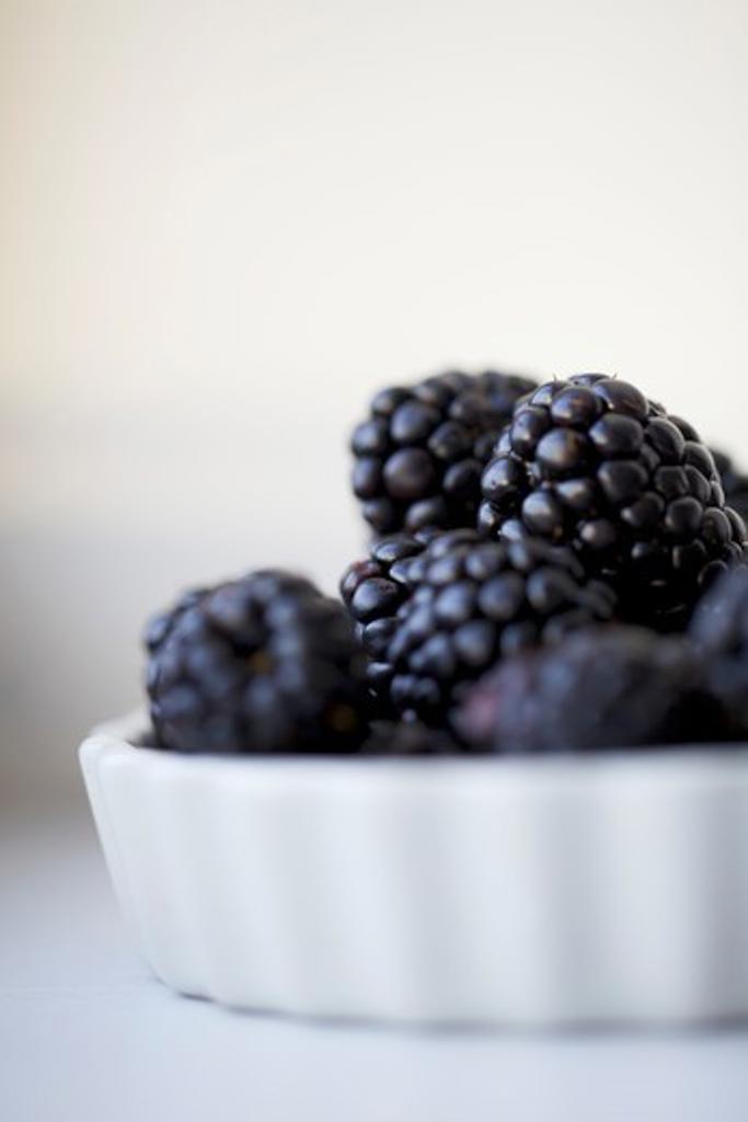 Fresh Blackberries in a White Tart Dish : Stock Photo