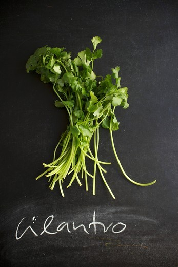 "Fresh Cilantro on a Chalk Board with the Word """"Cilantro"""" Written in Chalk : Stock Photo"