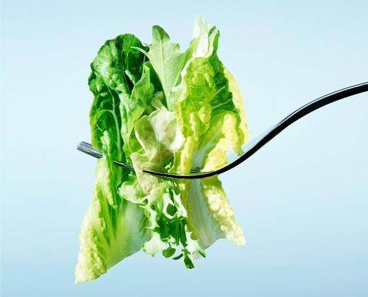 Stock Photo: 1532R-61929 Lettuce on a fork