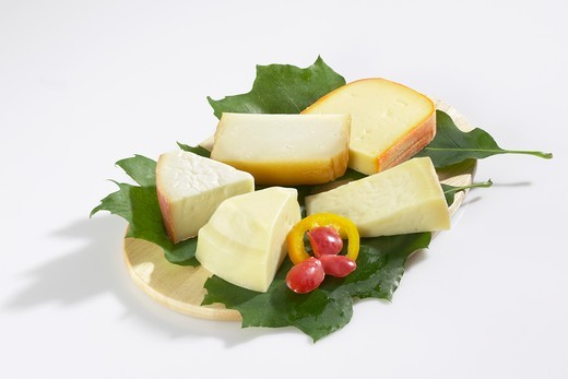 Spanish cheeses on leaves : Stock Photo