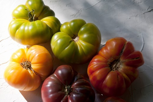 Stock Photo: 1532R-62320 Organic Heirloom Tomatoes; German Green, Black Kim, Old German, Amanda Orange