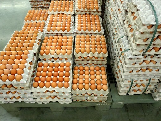 Brown eggs in egg trays in a supermarket : Stock Photo