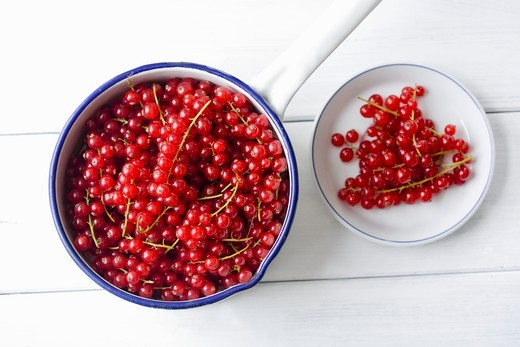 Stock Photo: 1532R-62905 Redcurrants in a bowl and on a plate