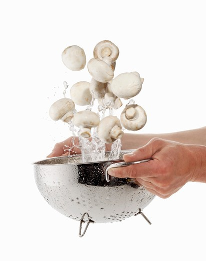 Mushrooms being washed in a sieve : Stock Photo