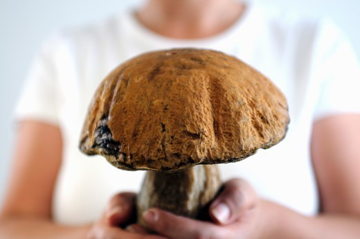 Stock Photo: 1532R-65270 A young woman holding a large porcini mushroom