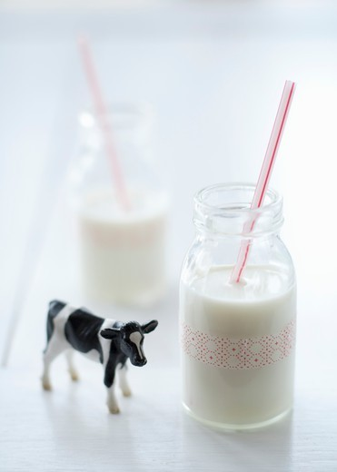 Stock Photo: 1532R-66247 Two Glasses of Milk with Straws; Cow Figurine