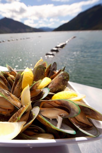 Stock Photo: 1532R-66304 Green-lipped mussels with lemons (Marlborough Sounds, New Zealand)