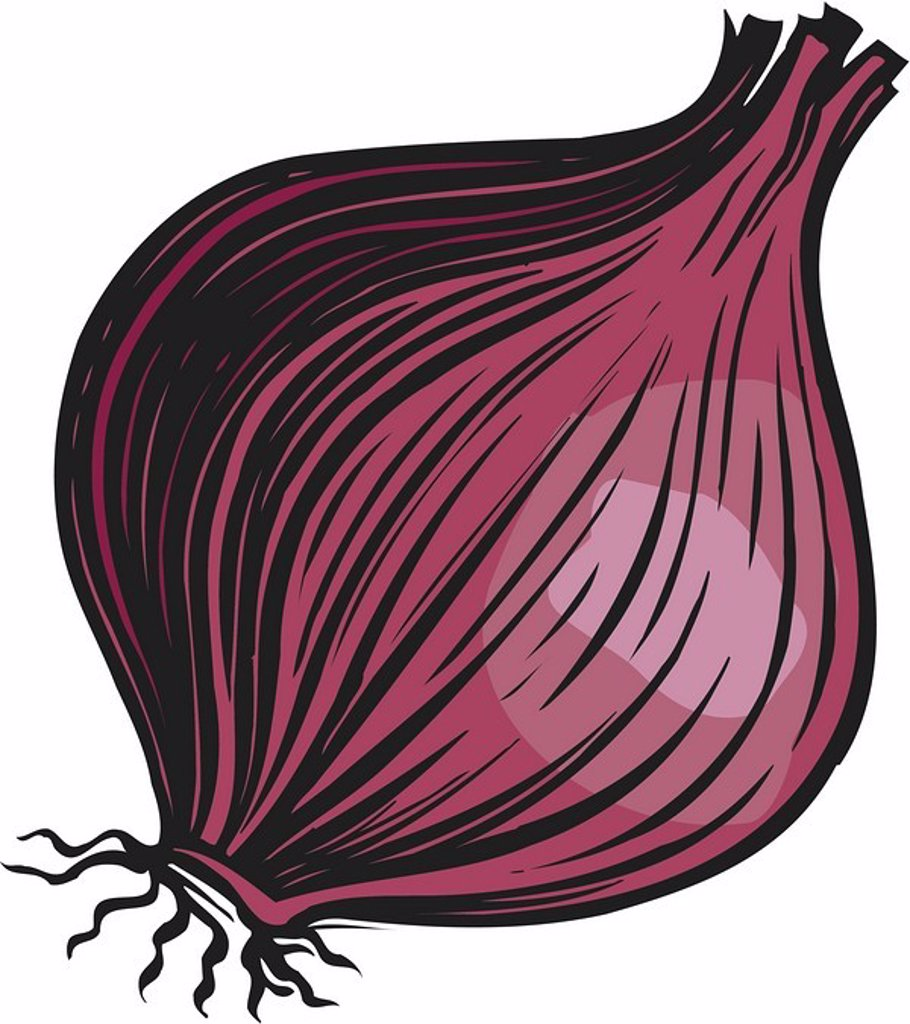 Stock Photo: 1538R-47988 A bulb of red onion on a white background