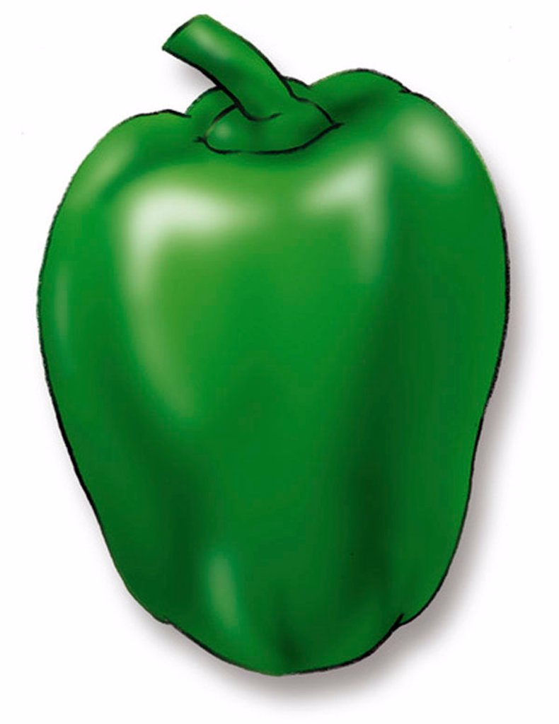 A picture of a green pepper : Stock Photo