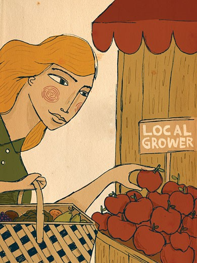 A woman picking apples from a local grower : Stock Photo