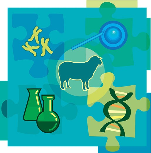 Montage illustration about genetic engineering containing chromosomes, DNA, chemicals, a sheep, and cloning : Stock Photo