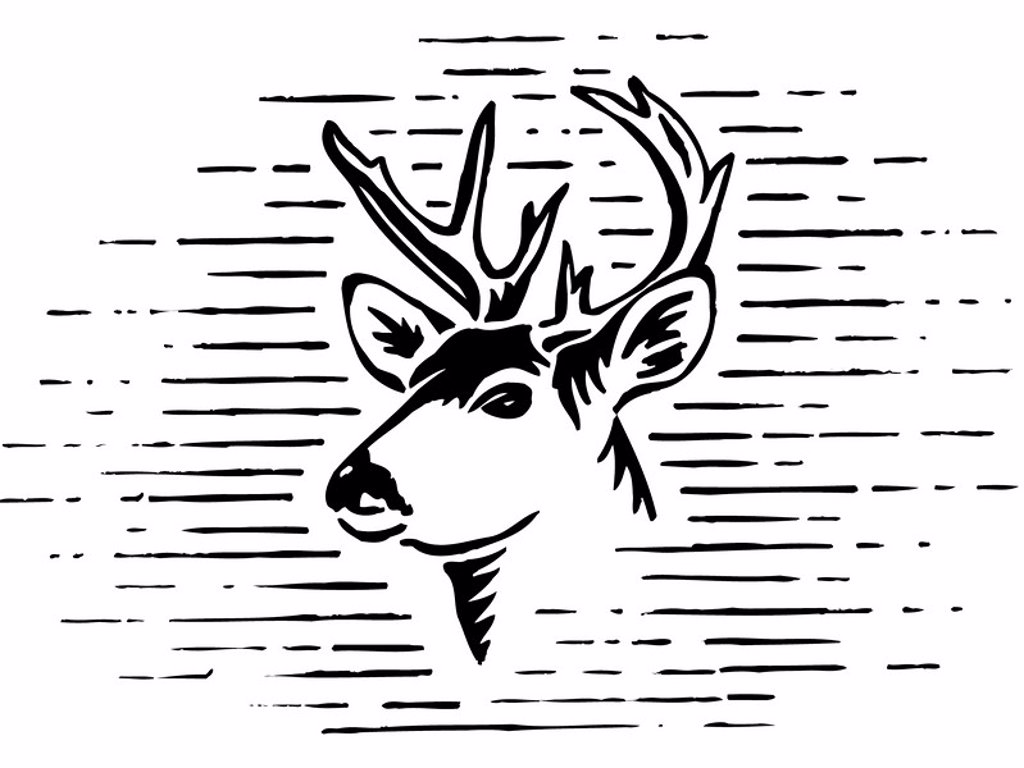 A black and white illustration of a reindeer : Stock Photo