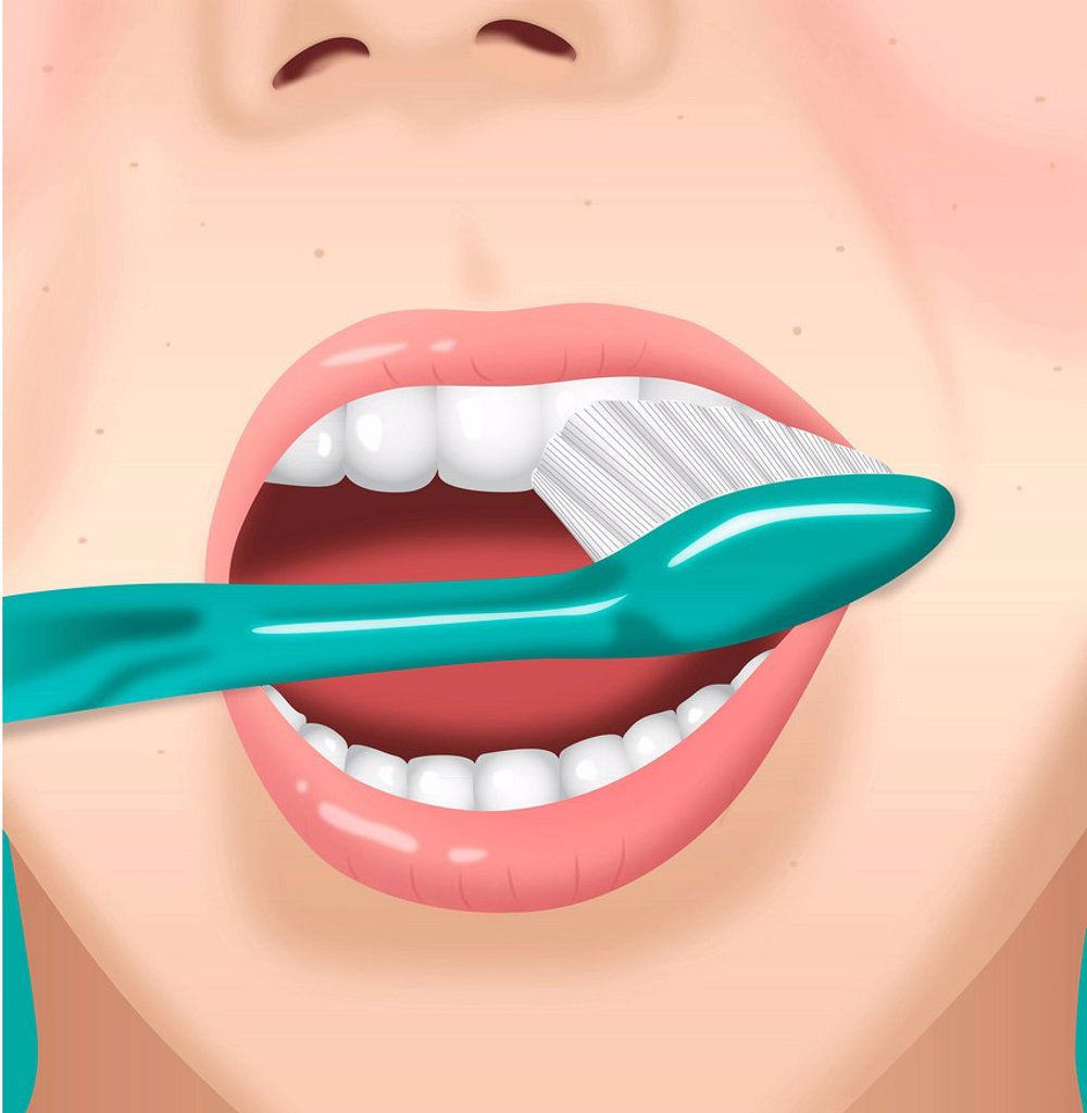 Stock Photo: 1538R-69068 A person brushing their teeth