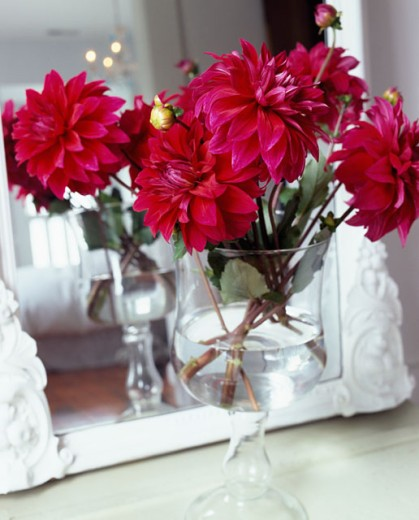 Stock Photo: 1545-314 Close-up of flowers in a vase