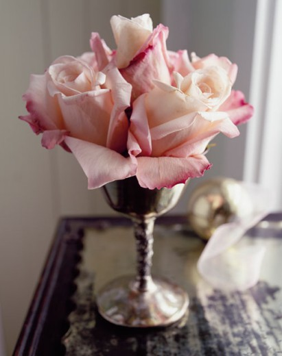 Stock Photo: 1545-348 Close-up of roses in a vase