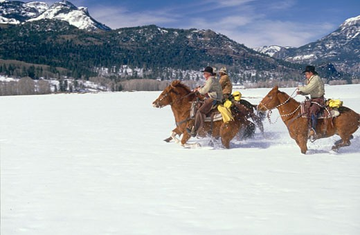 Three cowboys horseback riding in a snow covered landscape, Colorado, USA : Stock Photo