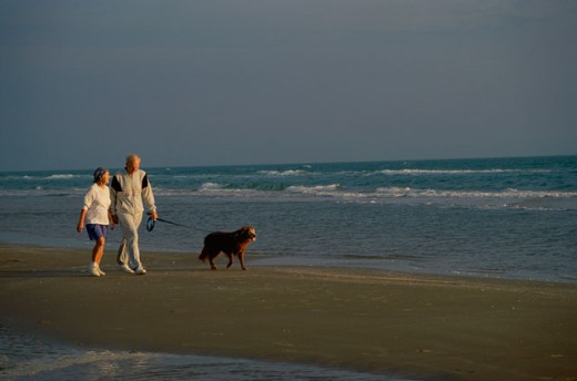 Stock Photo: 155-554E Senior couple walking with dog on the beach