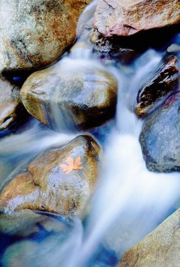 Stock Photo: 1555R-100083 Water through rocks
