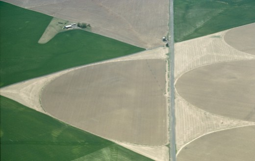 Farmland : Stock Photo