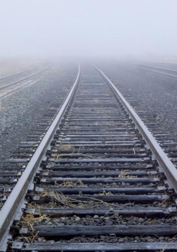 Foggy railroad tracks : Stock Photo