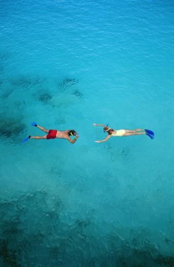 Stock Photo: 1555R-156030 Snorkelers in ocean