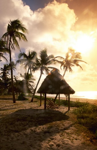 Hut on beach : Stock Photo