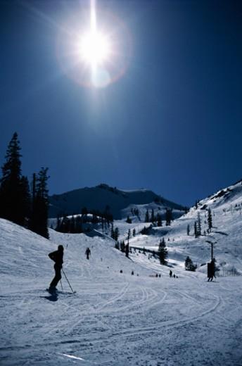 Skier on slope : Stock Photo