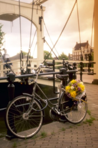 Bike with flowers, Amsterdam, Holland : Stock Photo