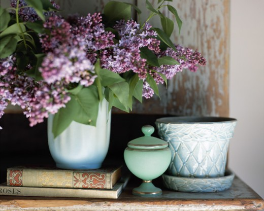 Lilacs, books and Flowerpot : Stock Photo