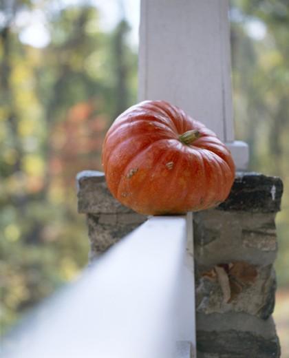 Pumpkin on porch railing : Stock Photo